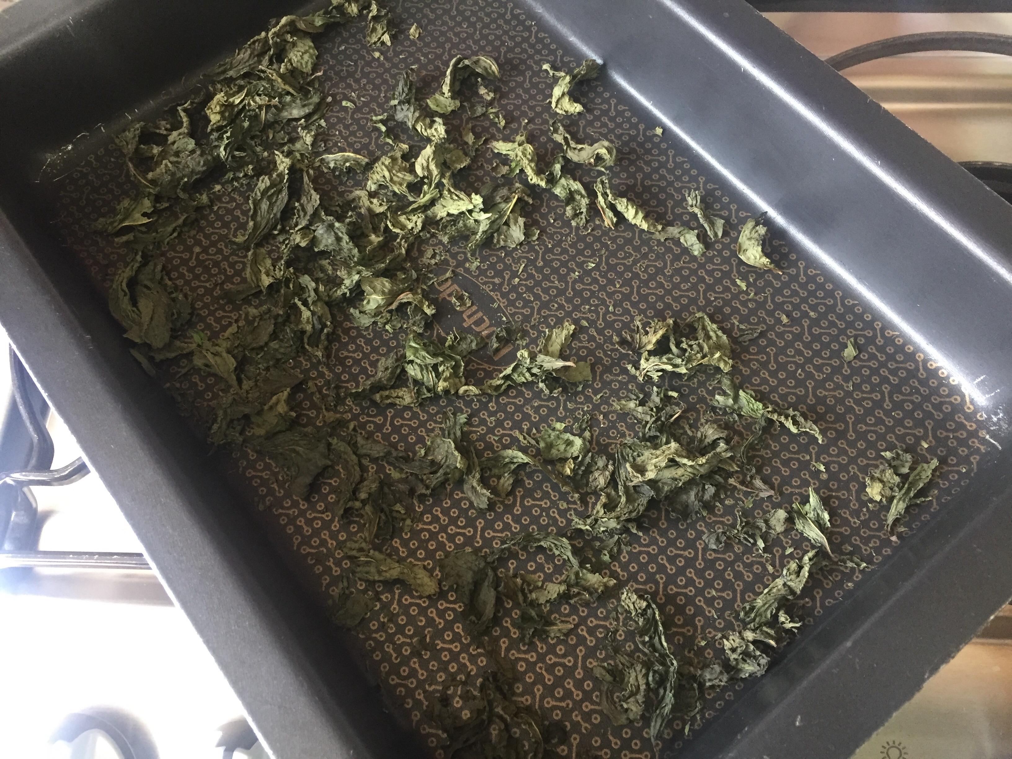 Folhas da hortelã após torradas no forno em fogo baixo